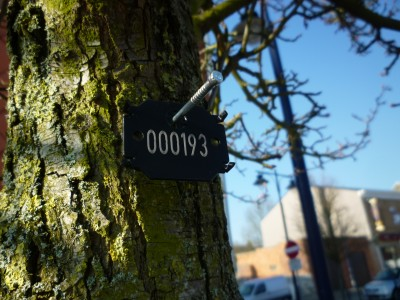Plaquette numèro arbre