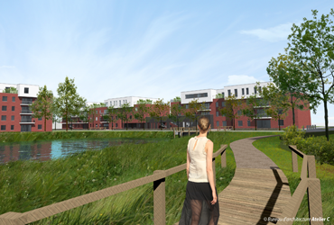 Mons Bassin 3D