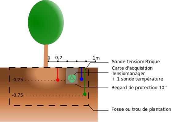 Schéma tensiométrie