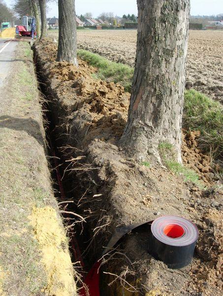 Alignement gravement atteint suite au creusement d'une tranchée
